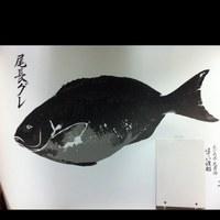オークルさん魚拓.jpg